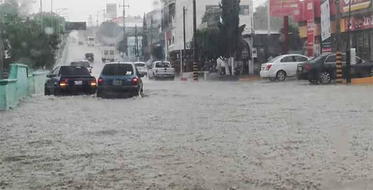 Deja lluvia encharcamientos y árboles caídos en la ciudad de Oaxaca .